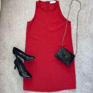 Everlane Japanese GoWeave High Neck Red Dress